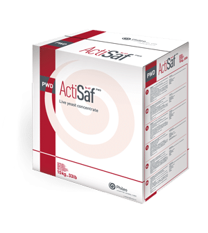 Live yeast concentrate - Actisaf PWD