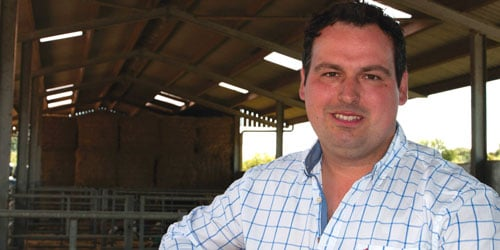 Actisaf helps rumen performance in dairy cows
