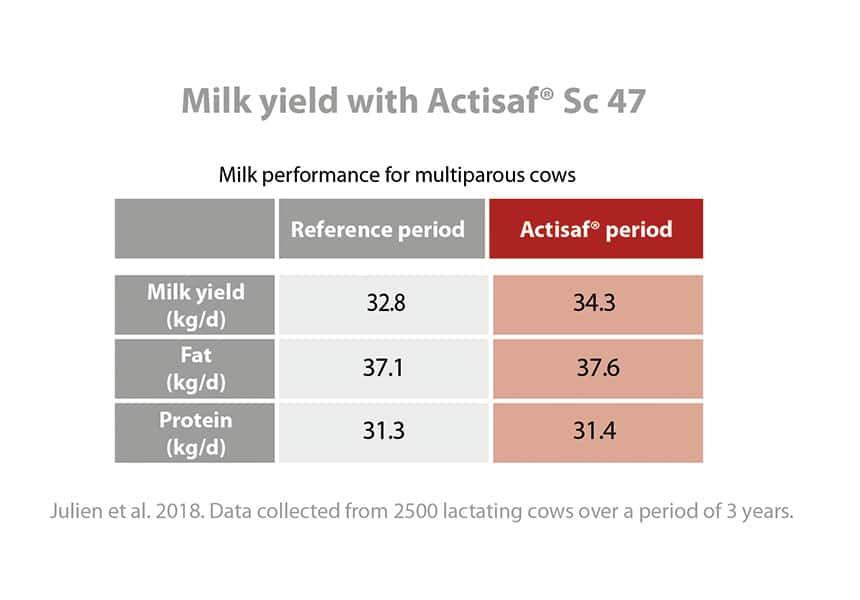 Calidad del rendimiento de la leche phileo