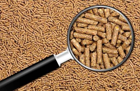 The history and future of feed processing