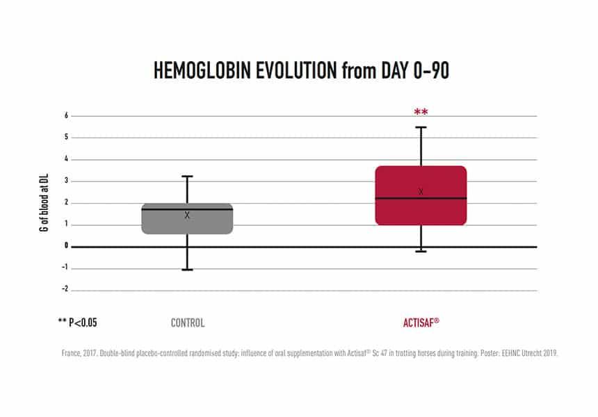 hemoglobina em cavalos