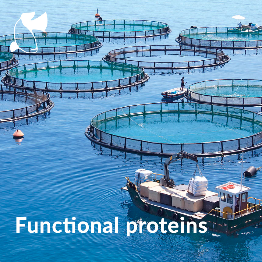 functional proteins