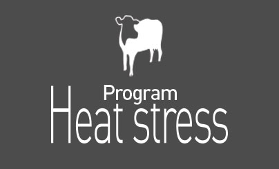 Program Heat stress dairy cow