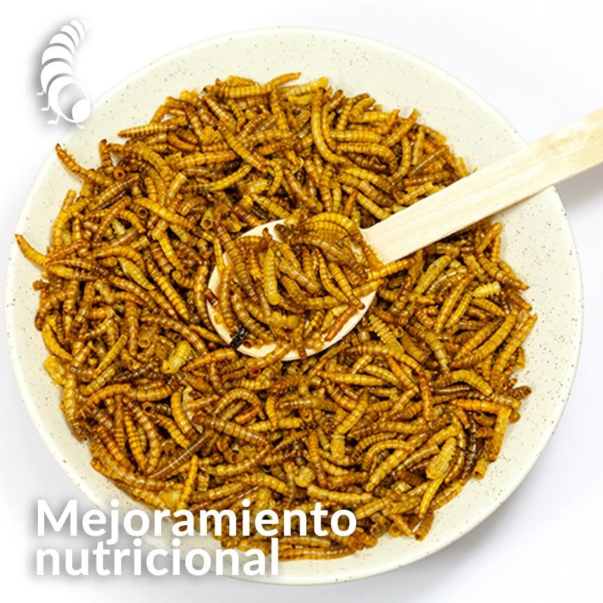 Mejoramiento-nutricional-de-la-harina-de-insectos