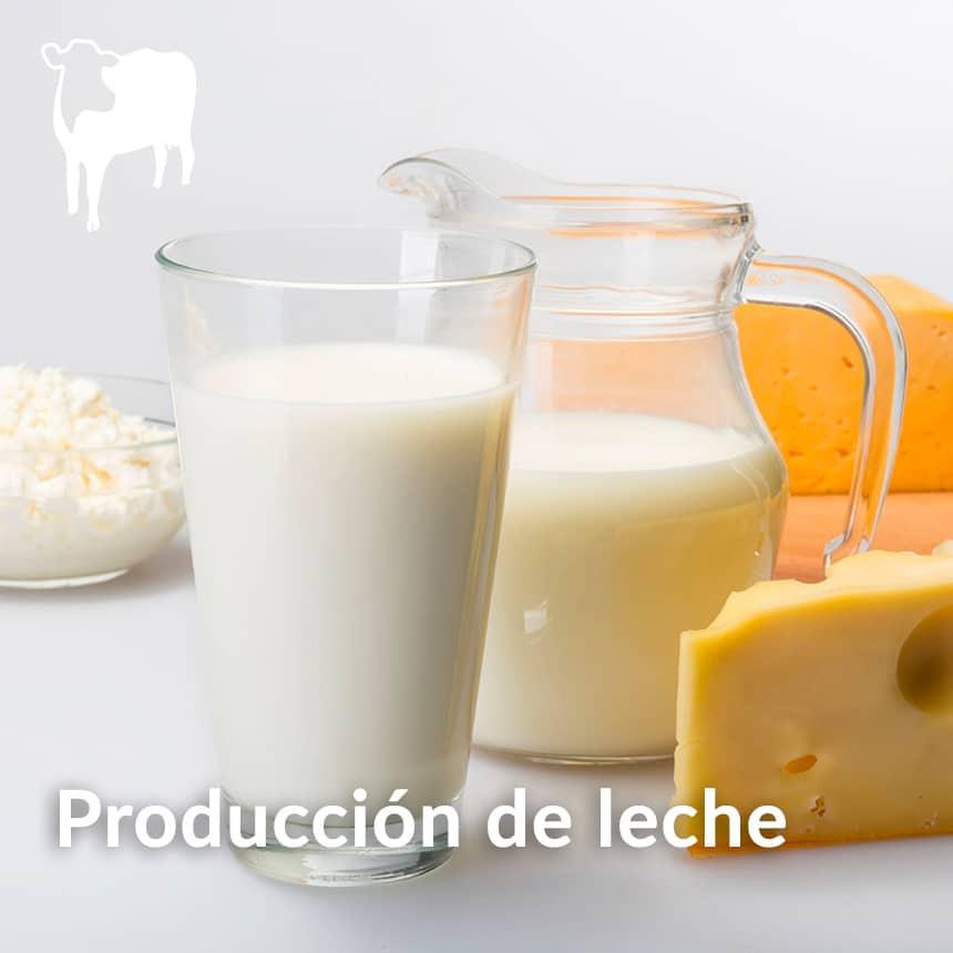 Produccion-de-leche