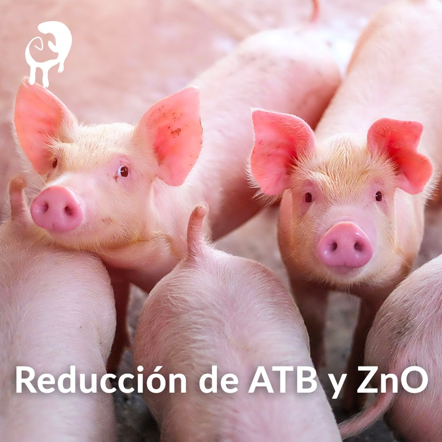 Reduccion-de-ATB-y-ZnO