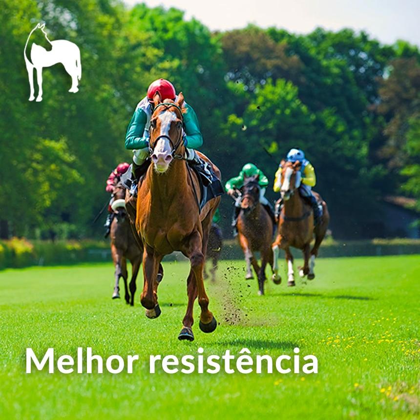 Melhor-resistencia