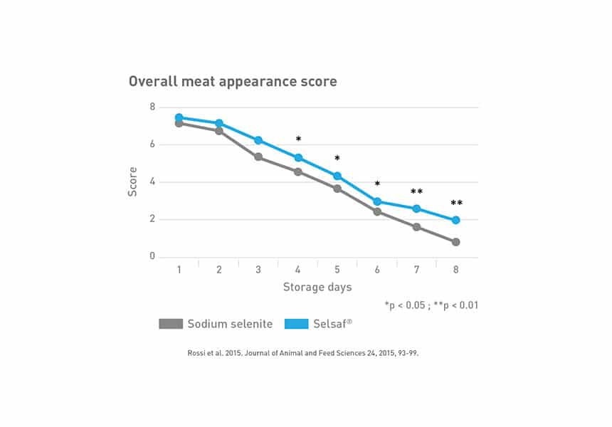 beef meat quality