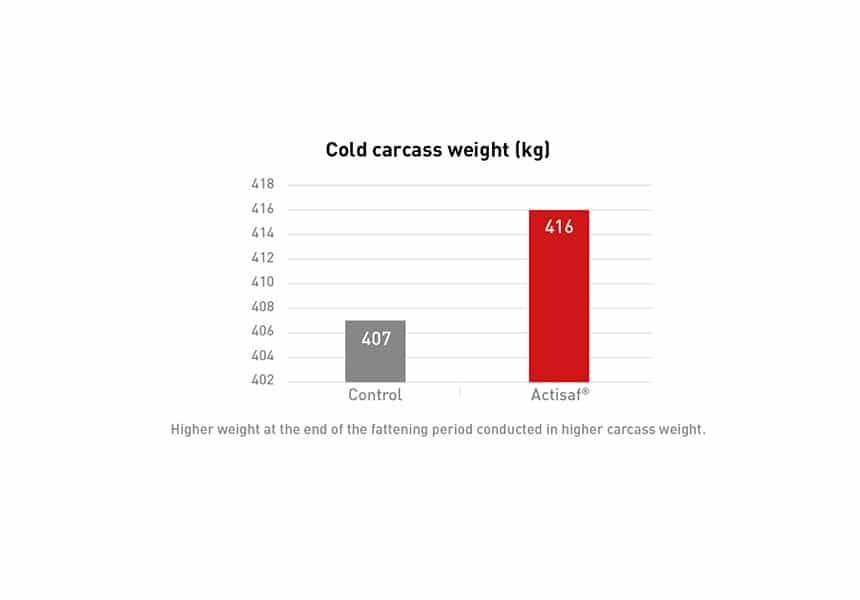 optimizing weight gain