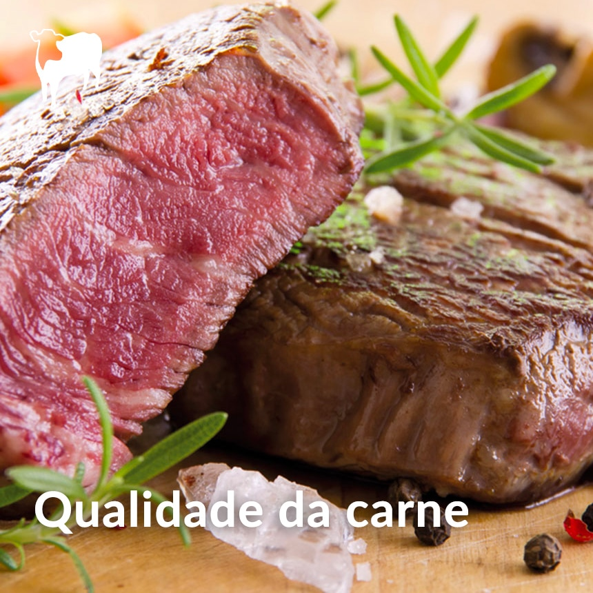 qualidade-da-carne