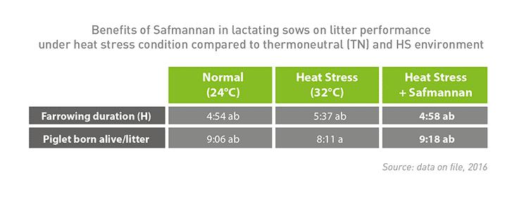 heat stress pigs