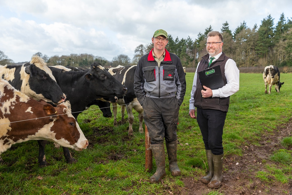 Autumn calving herd achieves over 50% milk from forage