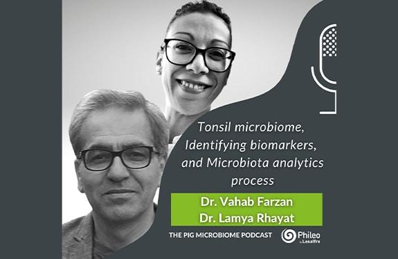 Tonsil microbiome